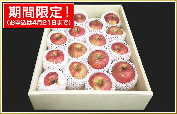 りんご(4Kg・16玉前後) 青果市場厳選 青森or長野産